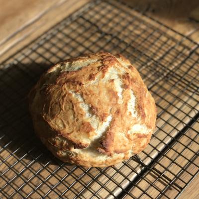 Homemade Bread…No Bread Machine Needed!!!